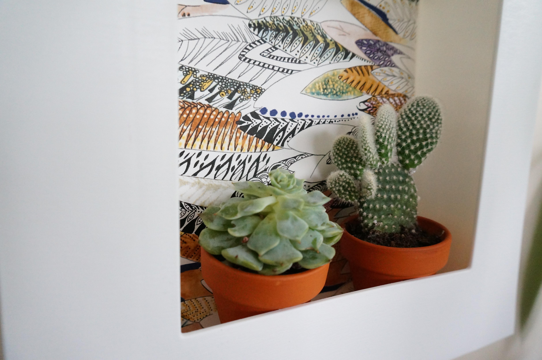 DIY cadre plante